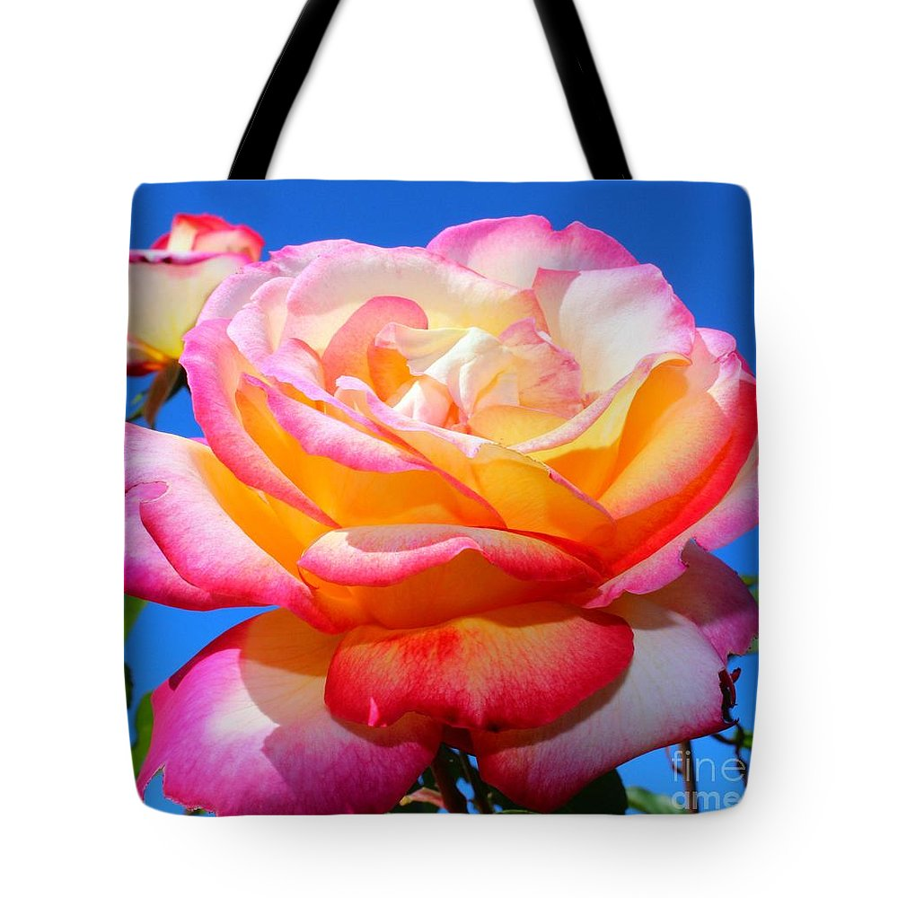 Rose Tote Bag featuring the photograph Basking In The Sun by Clare Bevan