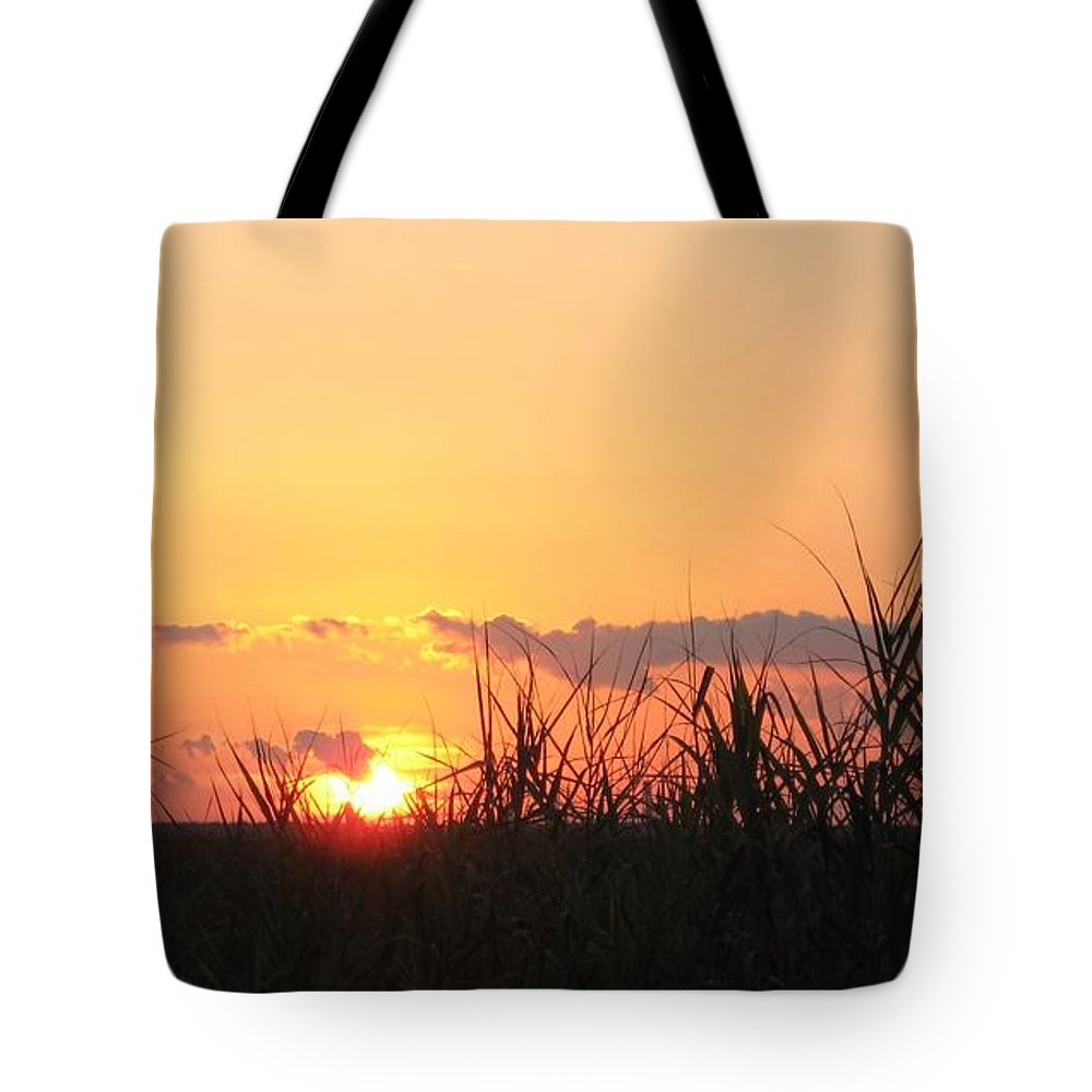 Sunset Tote Bag featuring the photograph Bayou Sunset by John Glass