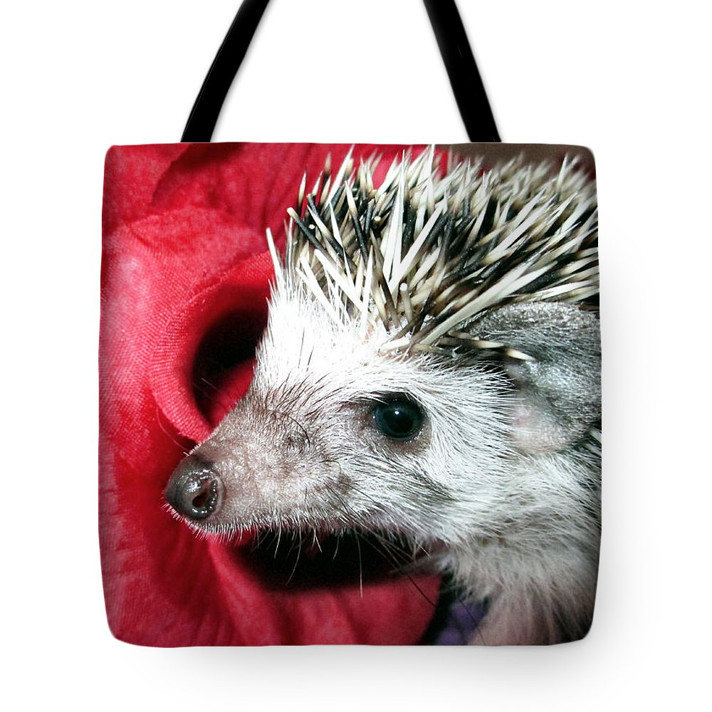 Hedgehog Tote Bag featuring the photograph Be Mine by Art Dingo