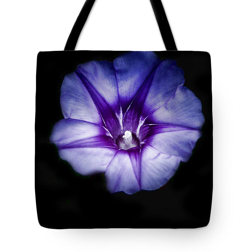 Beach Morning Glory Tote Bag featuring the photograph Beach Morning Glory Purple by Douglas Barnard