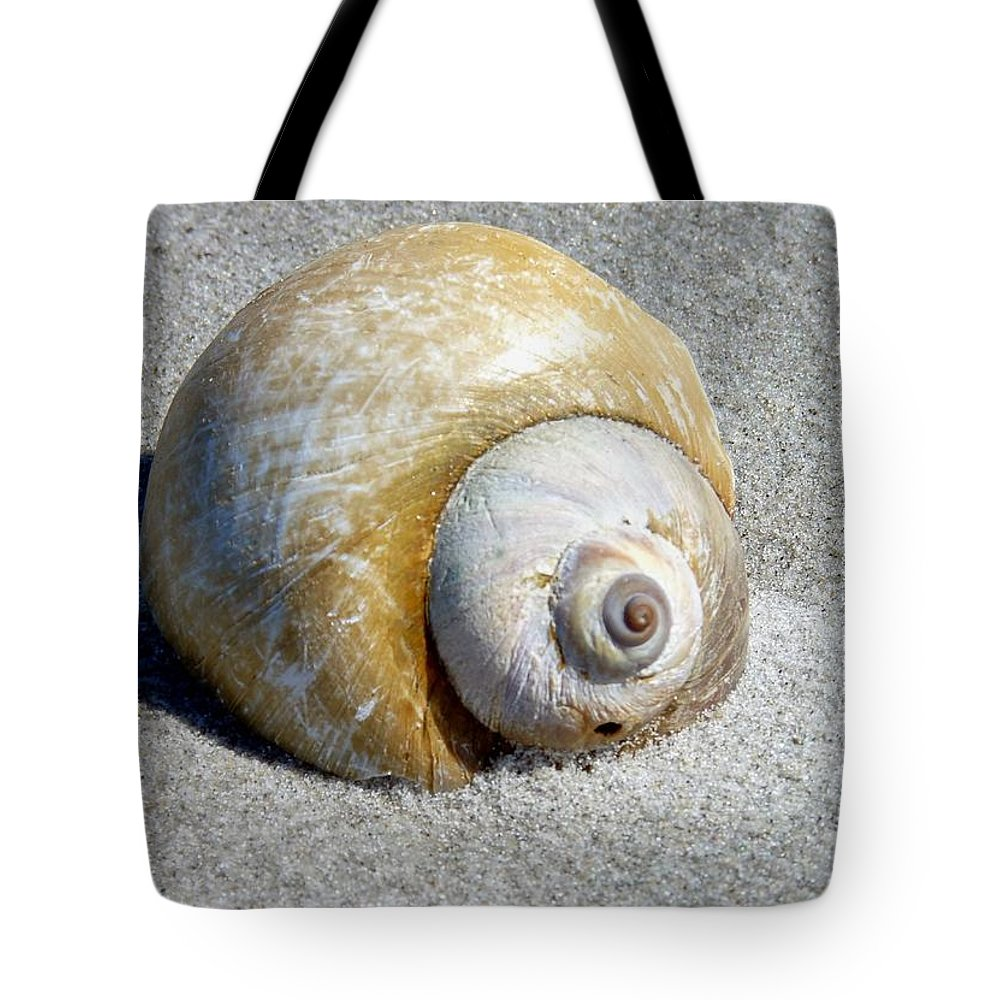 Beach Tote Bag featuring the photograph Beach Shell by Janice Drew