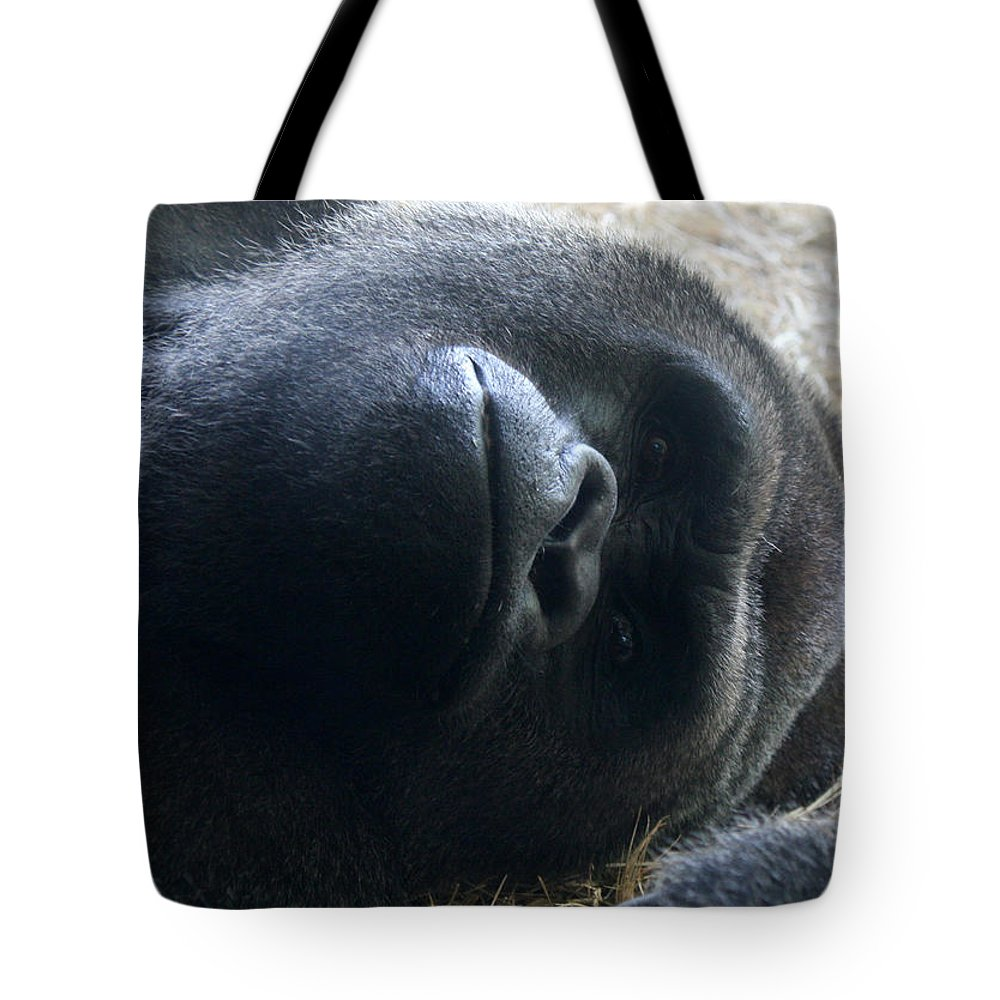 Tampa Bay Tote Bag featuring the photograph Beaut by David Nicholls