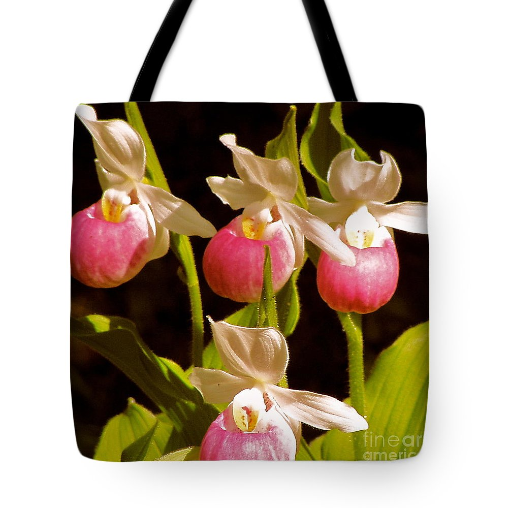 Wildflowers Tote Bag featuring the photograph Beauties by Brenda Ketch