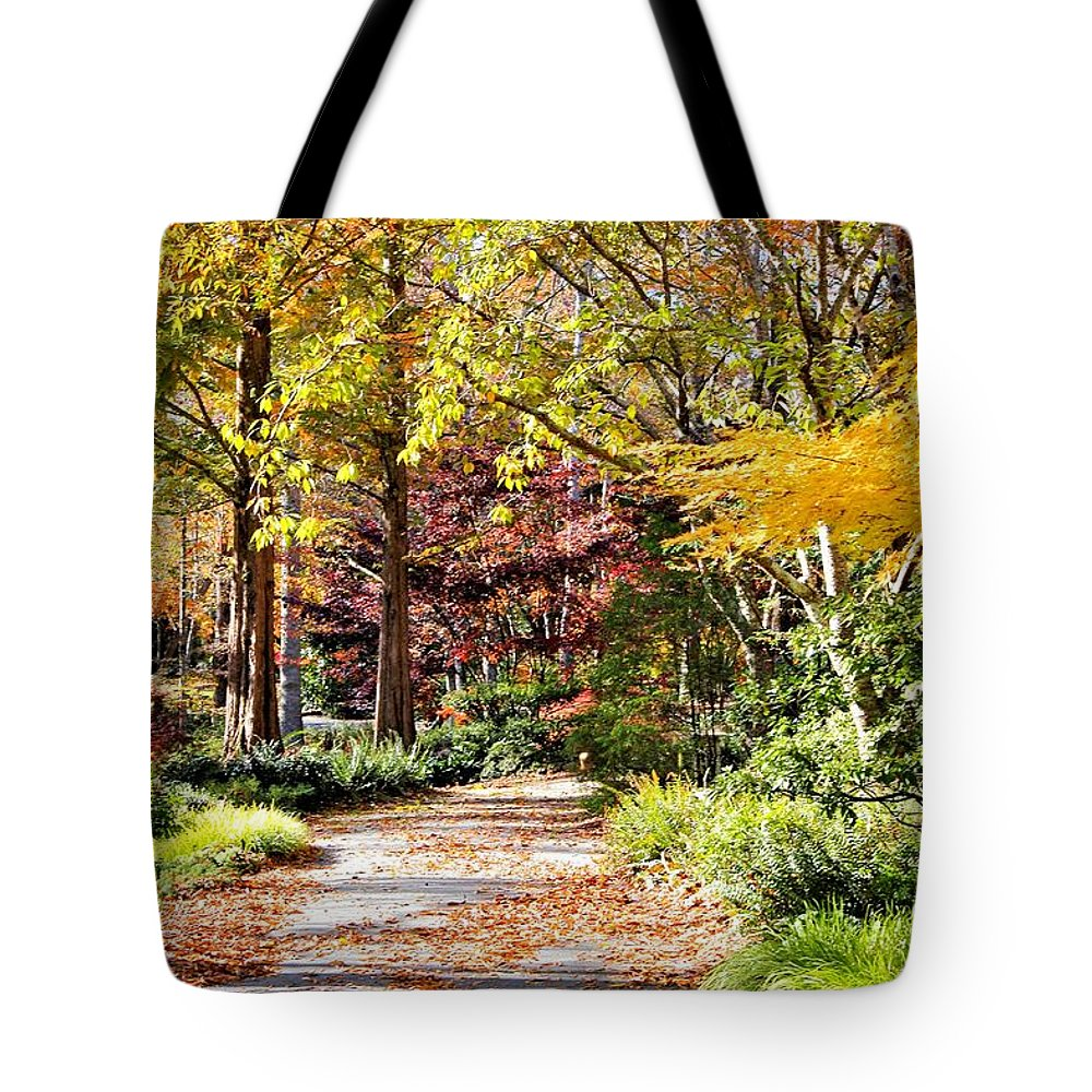 Trees Tote Bag featuring the photograph Beautiful Afternoon by Katherine White