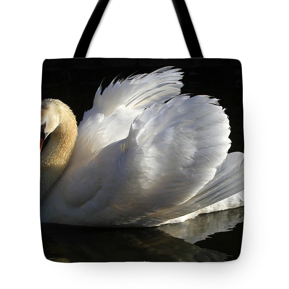 Swan Tote Bag featuring the photograph Beautiful Display by Donna Kennedy