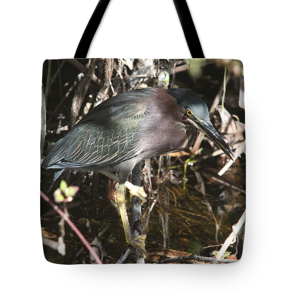 Little Green Heron Tote Bag featuring the photograph Beautiful Heron by Christiane Schulze Art And Photography
