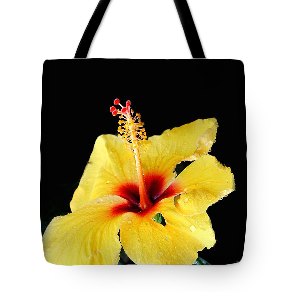 Floral Tote Bag featuring the photograph Beauty In The Natural by Debbie Nobile