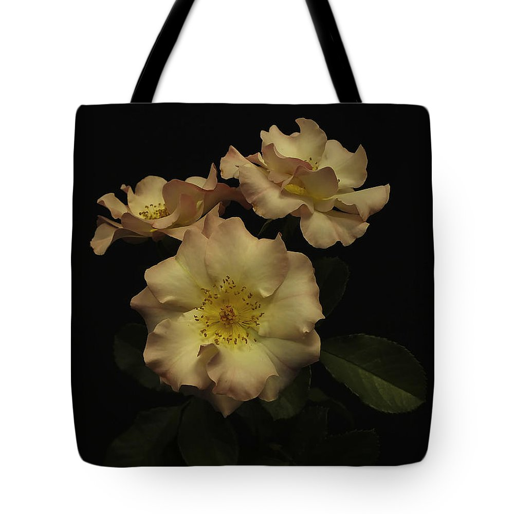 Roses Tote Bag featuring the photograph Beauty In Three by Lucinda Walter