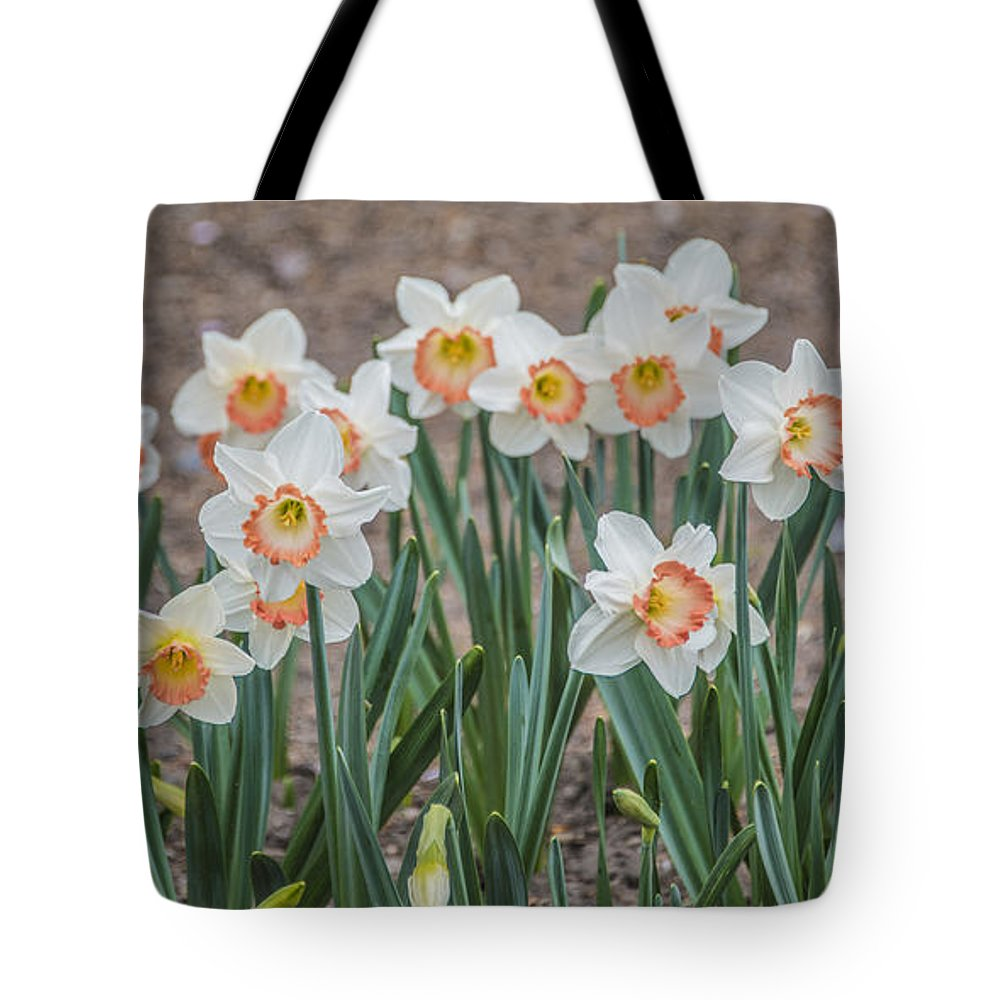 Botanical Gardens Tote Bag featuring the photograph Beauty by Theodore Jones