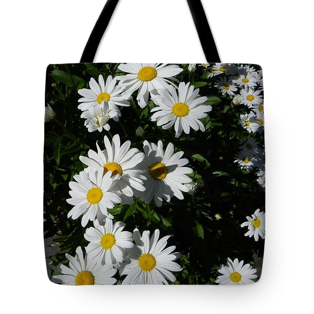 Daisy Tote Bag featuring the photograph Bed Of Daisies by KD Johnson