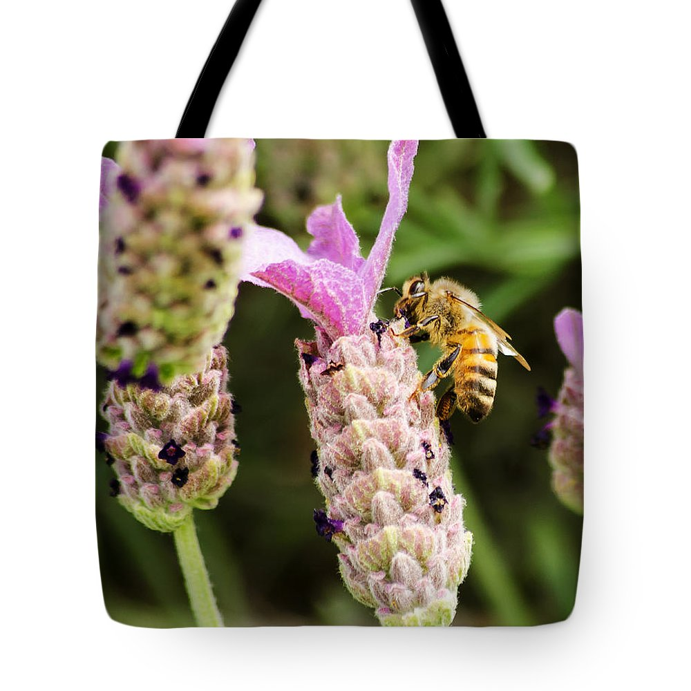 Dallas Tote Bag featuring the photograph Bee At Work Here by Allen Sheffield
