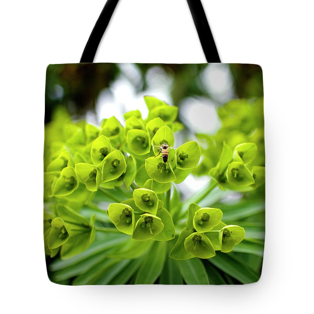 Insect Tote Bag featuring the photograph Bee Pollenating Flower by Pete Starman