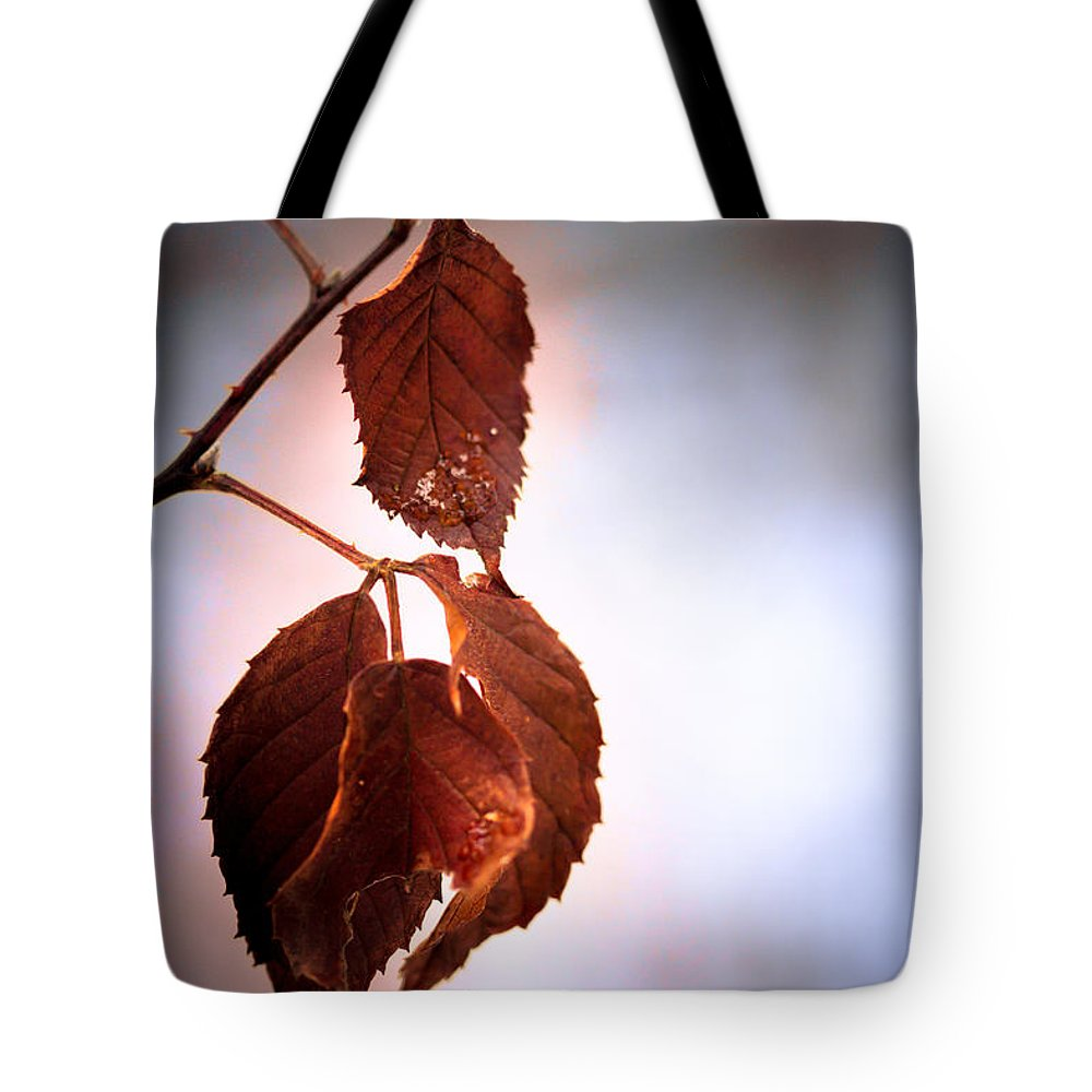 Leaves Tote Bag featuring the photograph Before We Fall by Shane Holsclaw