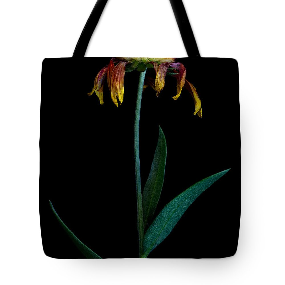 Flower Tote Bag featuring the photograph Beginning Of The End by Robert Woodward