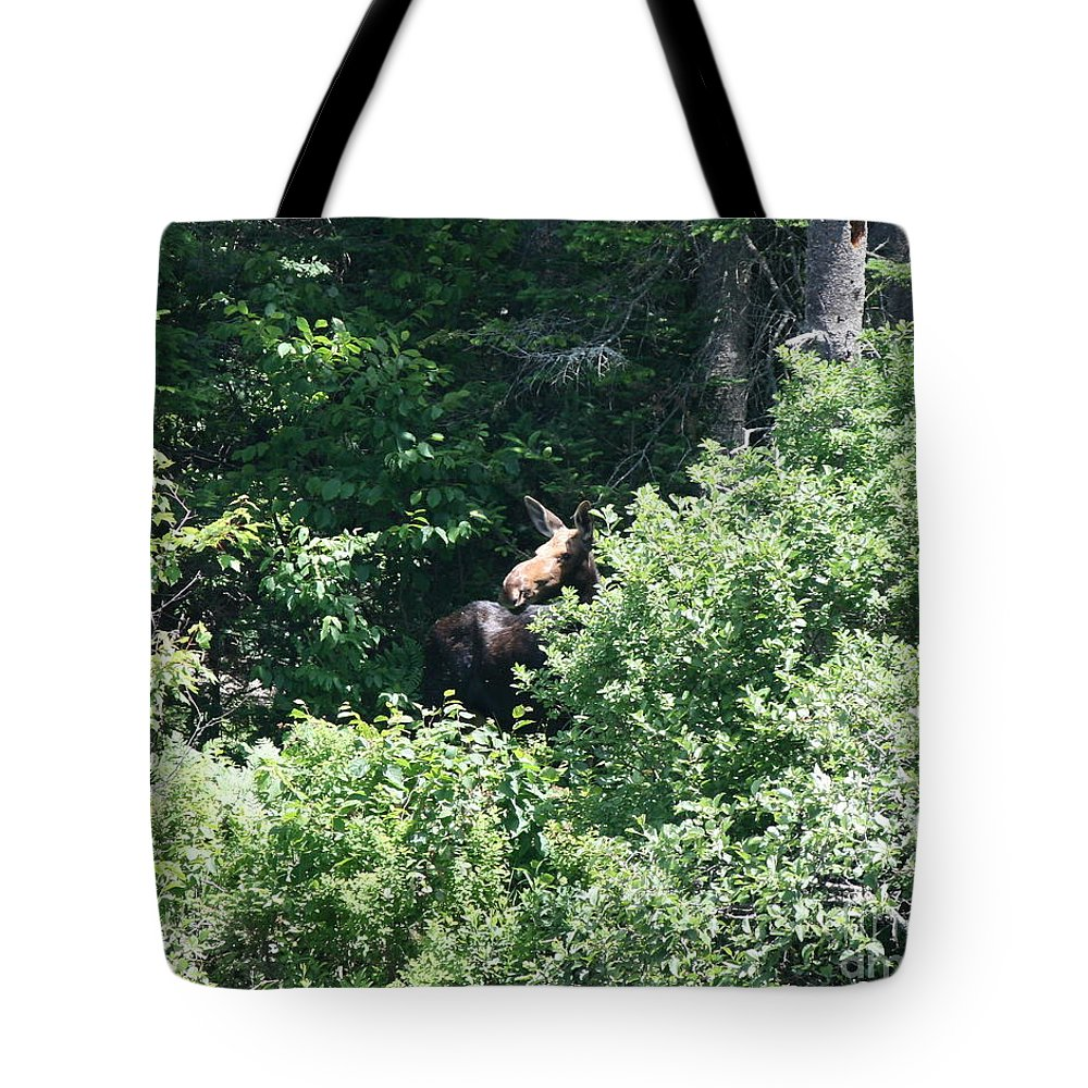Moose Tote Bag featuring the photograph Behind The Shrubs by Neal Eslinger