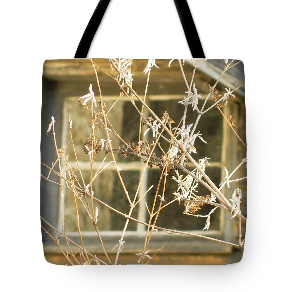 Window Tote Bag featuring the photograph Beige Window At The End Of Winter by Kathy Barney