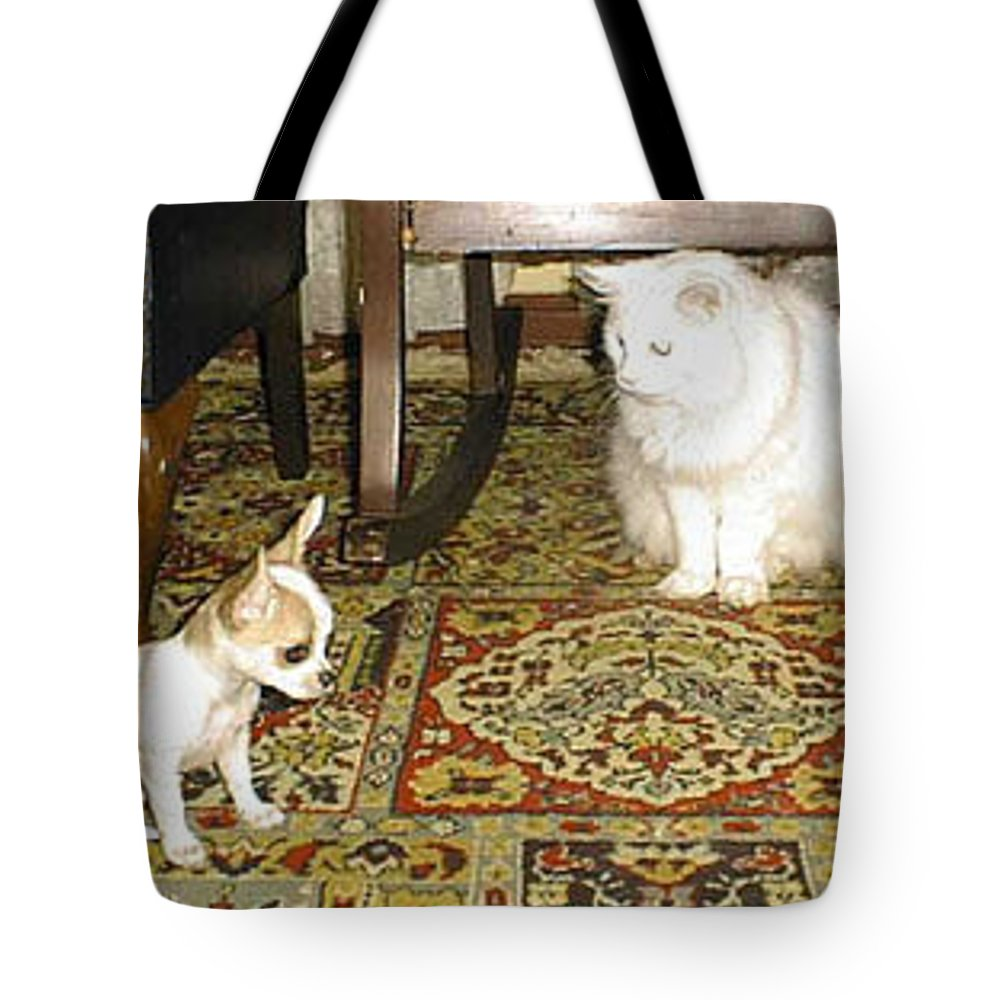 Chihuahua Tote Bag featuring the photograph Being Humble by Leah Delano