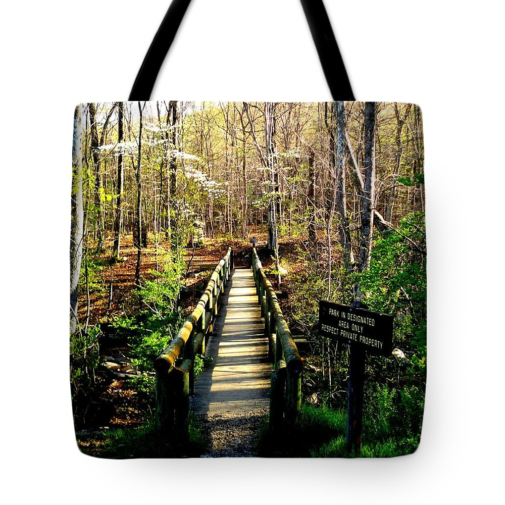 At Tote Bag featuring the photograph Belfast Trail by Cathy Shiflett