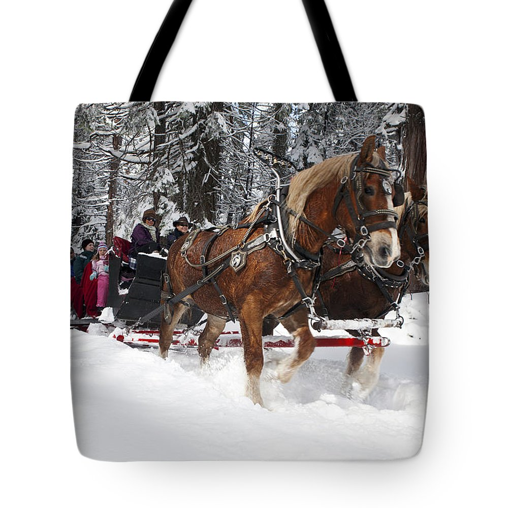 Travel Tote Bag featuring the photograph Belgian Draft Horses Pulls A Sleigh In Yosemite National Park by Jason O Watson