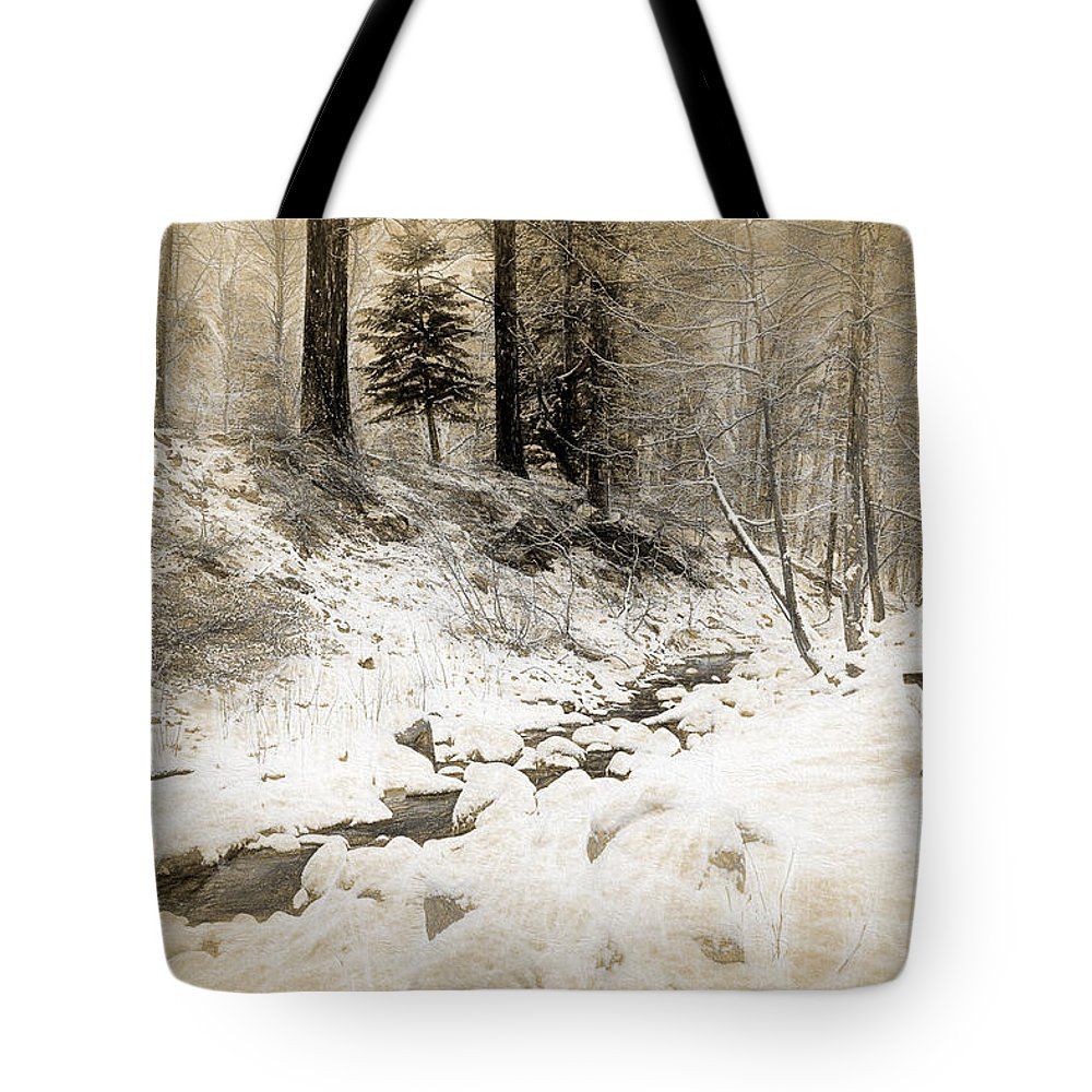 Beauty Tote Bag featuring the photograph Bench By Creek by Maria Coulson