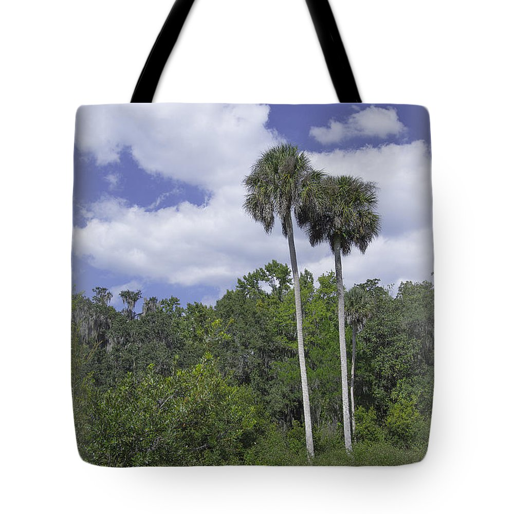 Trees Tote Bag featuring the photograph Benched At Rainbow Springs Campground by Judy Hall-Folde