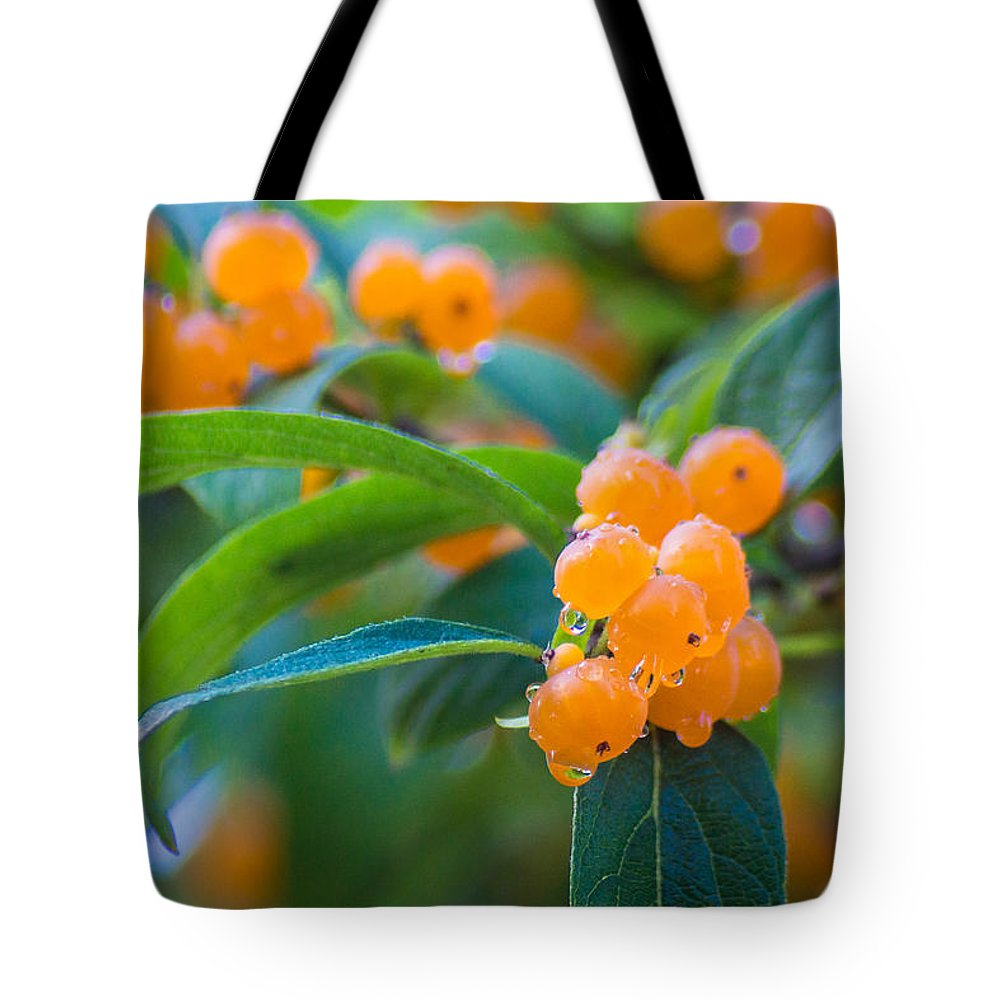 Berry Tote Bag featuring the photograph Berrylicious by Bill Pevlor
