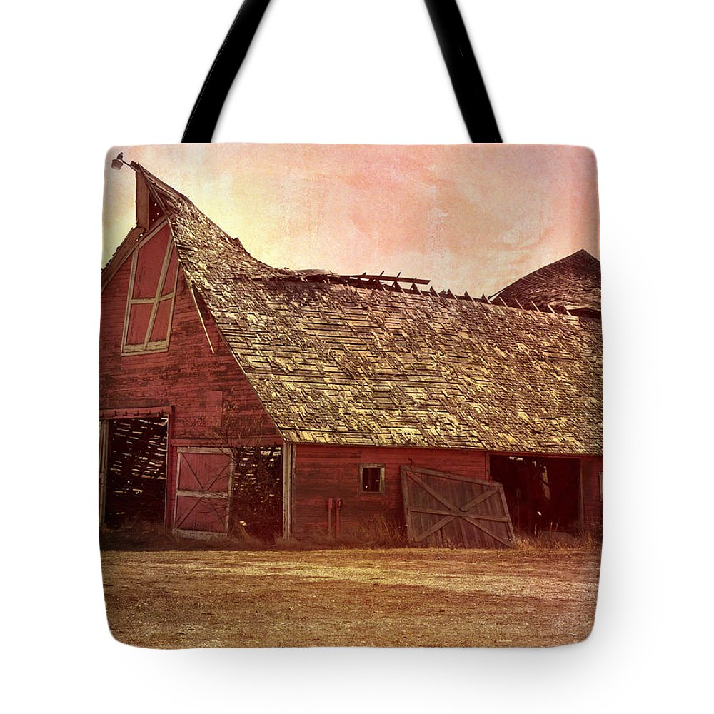Barn Tote Bag featuring the photograph Better Days by Image Takers Photography LLC - Carol haddon