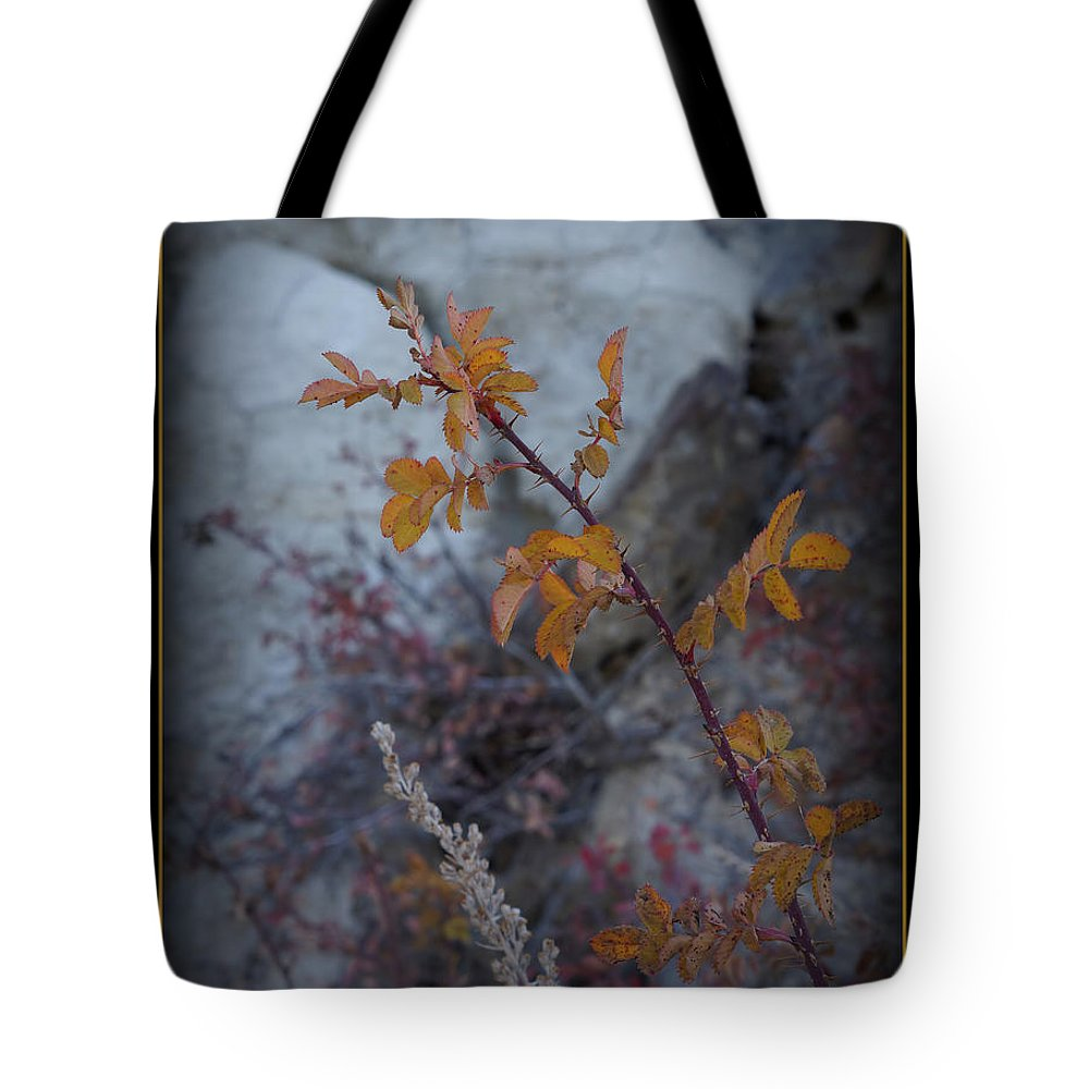 Thorns Tote Bag featuring the photograph Beware The Thorns by Ernie Echols