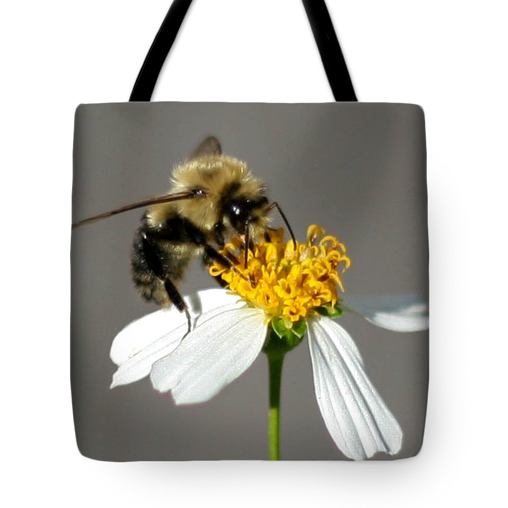 Bee Tote Bag featuring the photograph Big Bee by Mechala Matthews