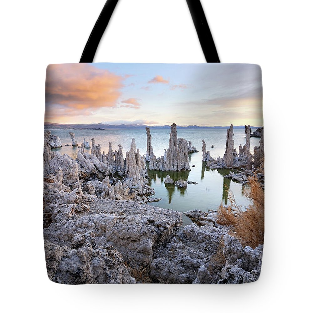 Water's Edge Tote Bag featuring the photograph Big Cloud Above Tufas On Mono Lake by Rezus