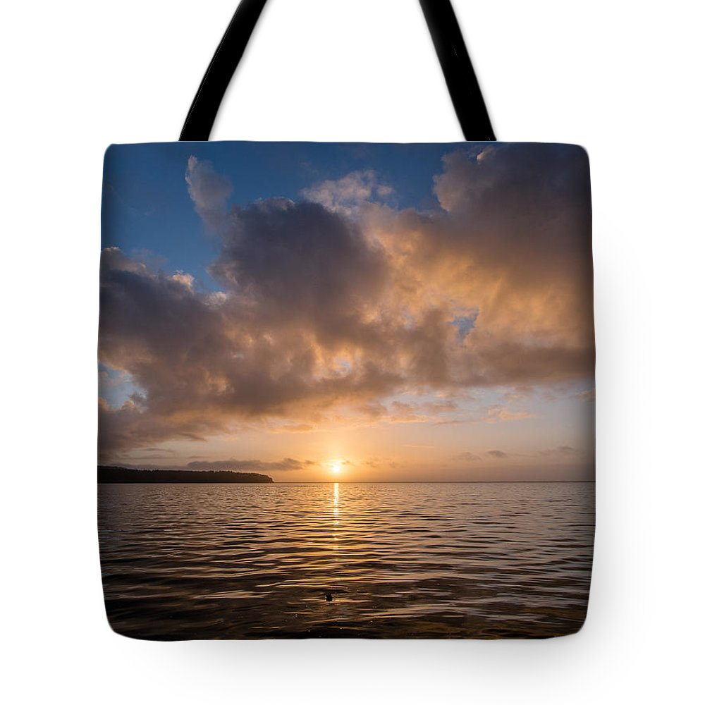 Big Lagoon Tote Bag featuring the photograph Big Lagoon Winter Evening by Greg Nyquist