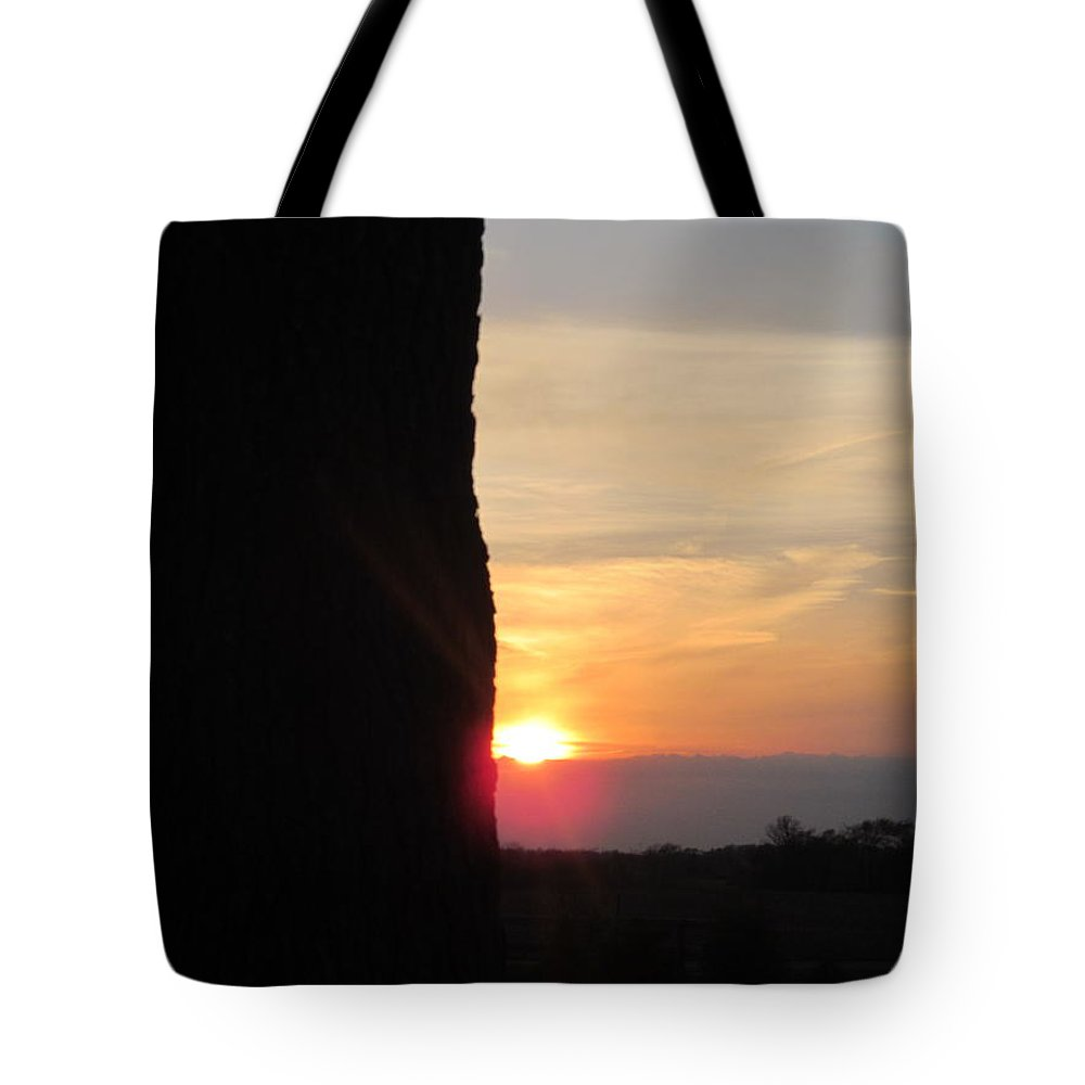 Tree Tote Bag featuring the photograph Big Oak And Sunset by Tina M Wenger