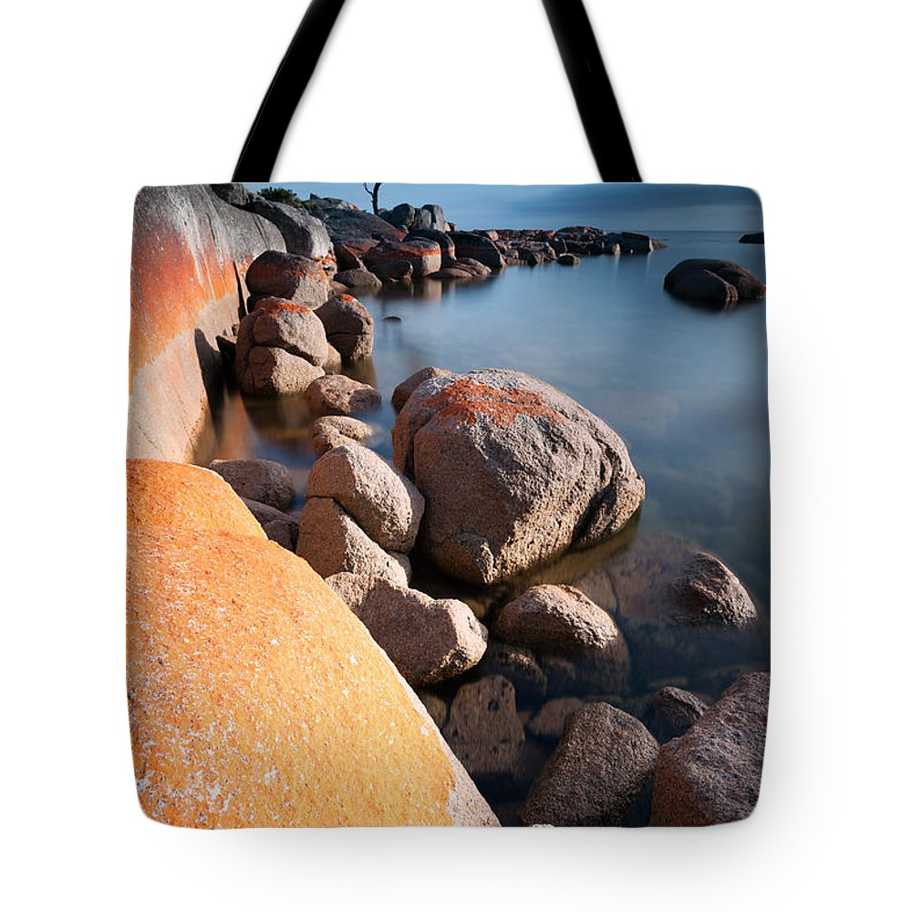 Tree Tote Bag featuring the photograph Binalong Bay At Sunrise by Matteo Colombo