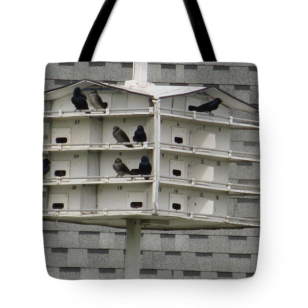 House Tote Bag featuring the photograph Bird Apartment House by Tina M Wenger