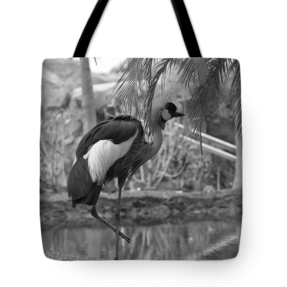 Landscape Tote Bag featuring the photograph Bird In Paradise by Athala Carole Bruckner