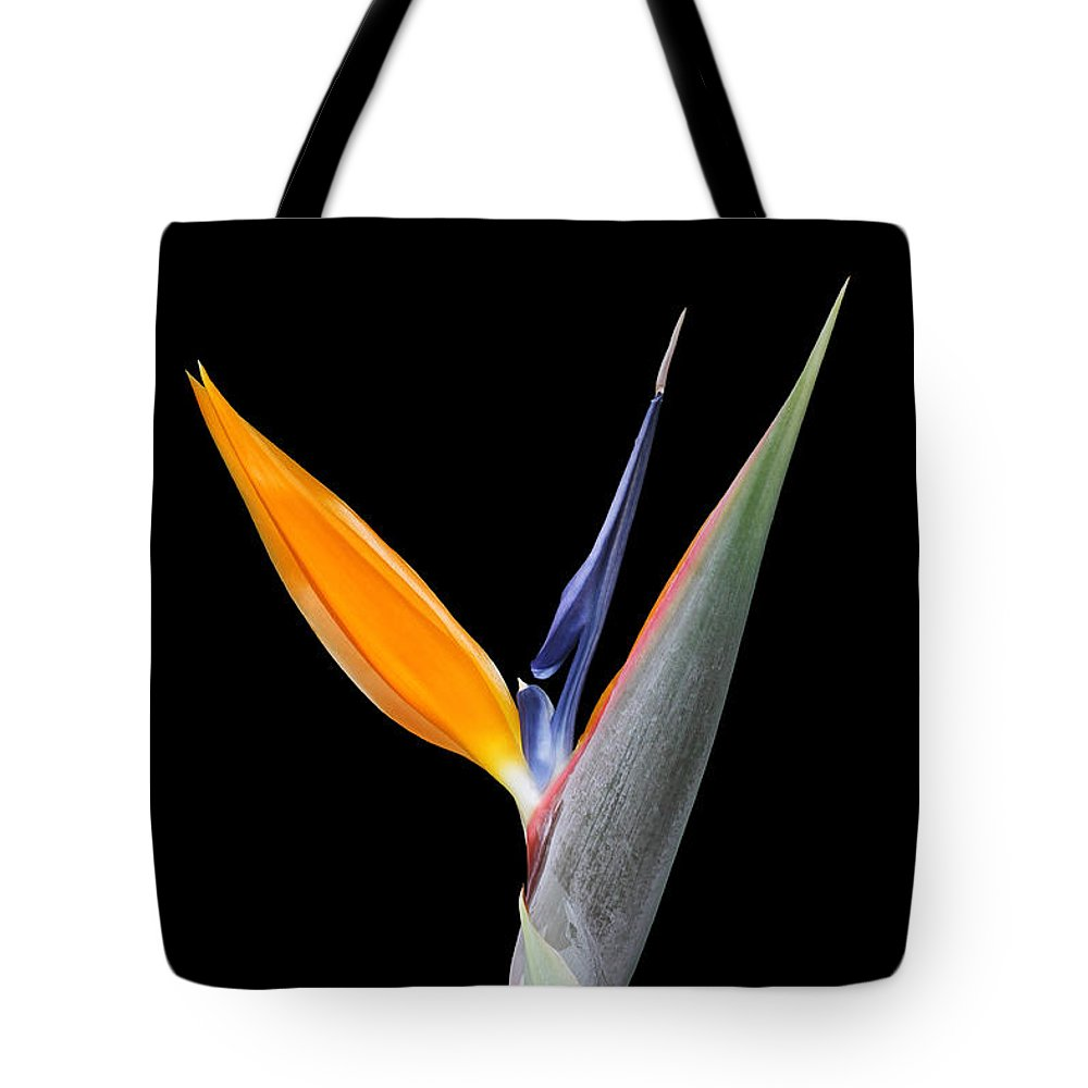 Bird Of Paradise Flower Tote Bag featuring the photograph Bird Of Paradise #2 by Judy Whitton