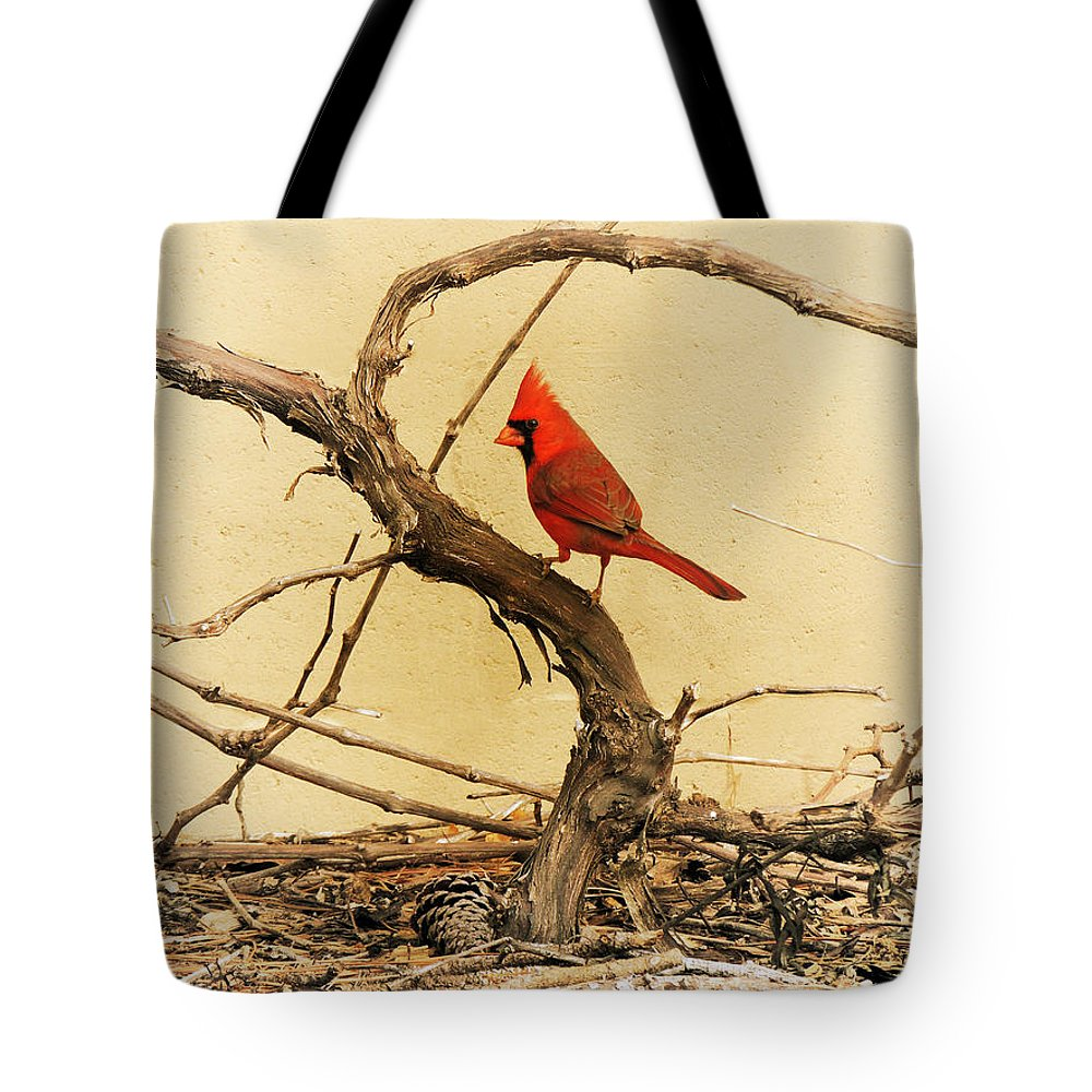 Northern Cardinal Tote Bag featuring the photograph Bird On A Vine by Jayne Wilson