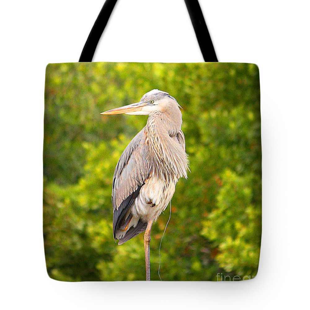 Cape Coral Tote Bag featuring the photograph Bird On A Wire by Christine Dekkers
