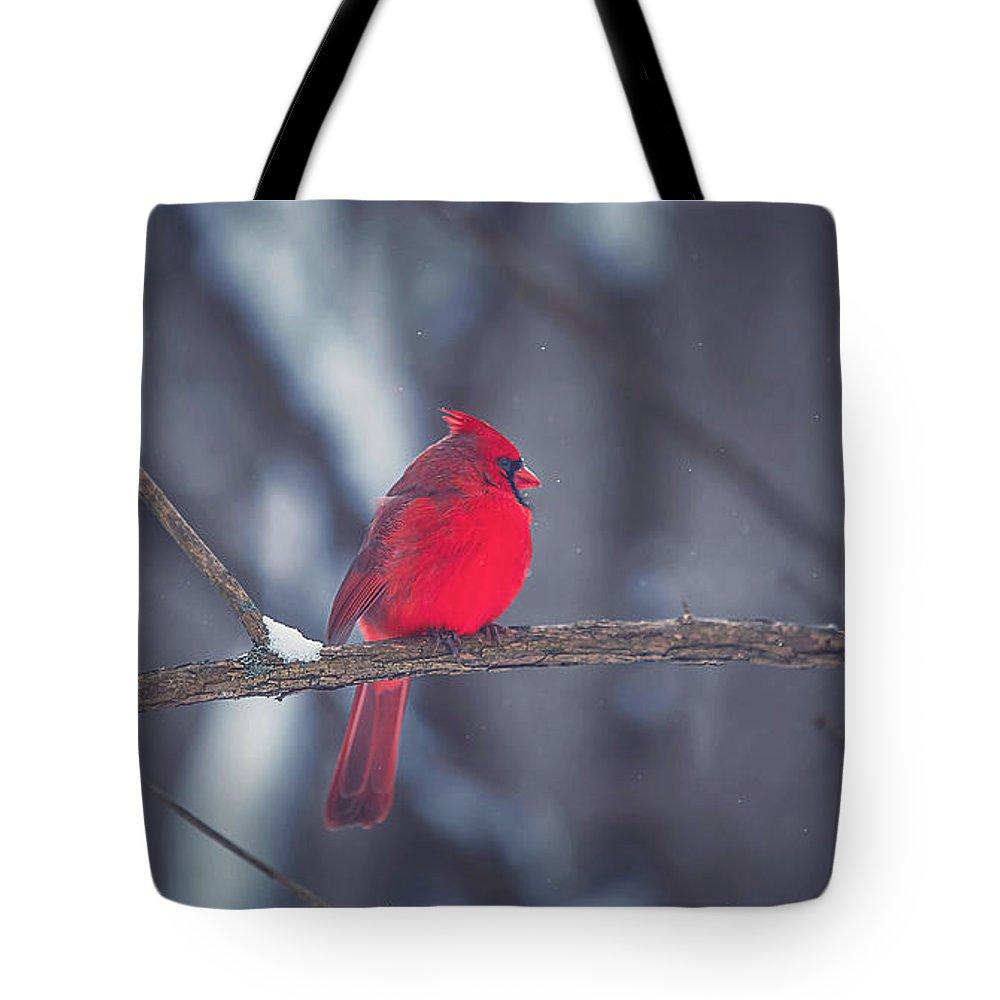 Cardinal Tote Bags
