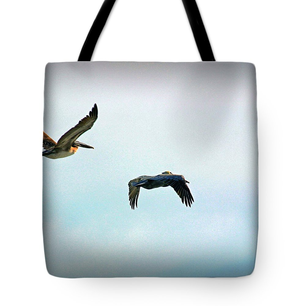 Coastal Scene Tote Bag featuring the photograph Birds Of A Feather by Phil Mancuso