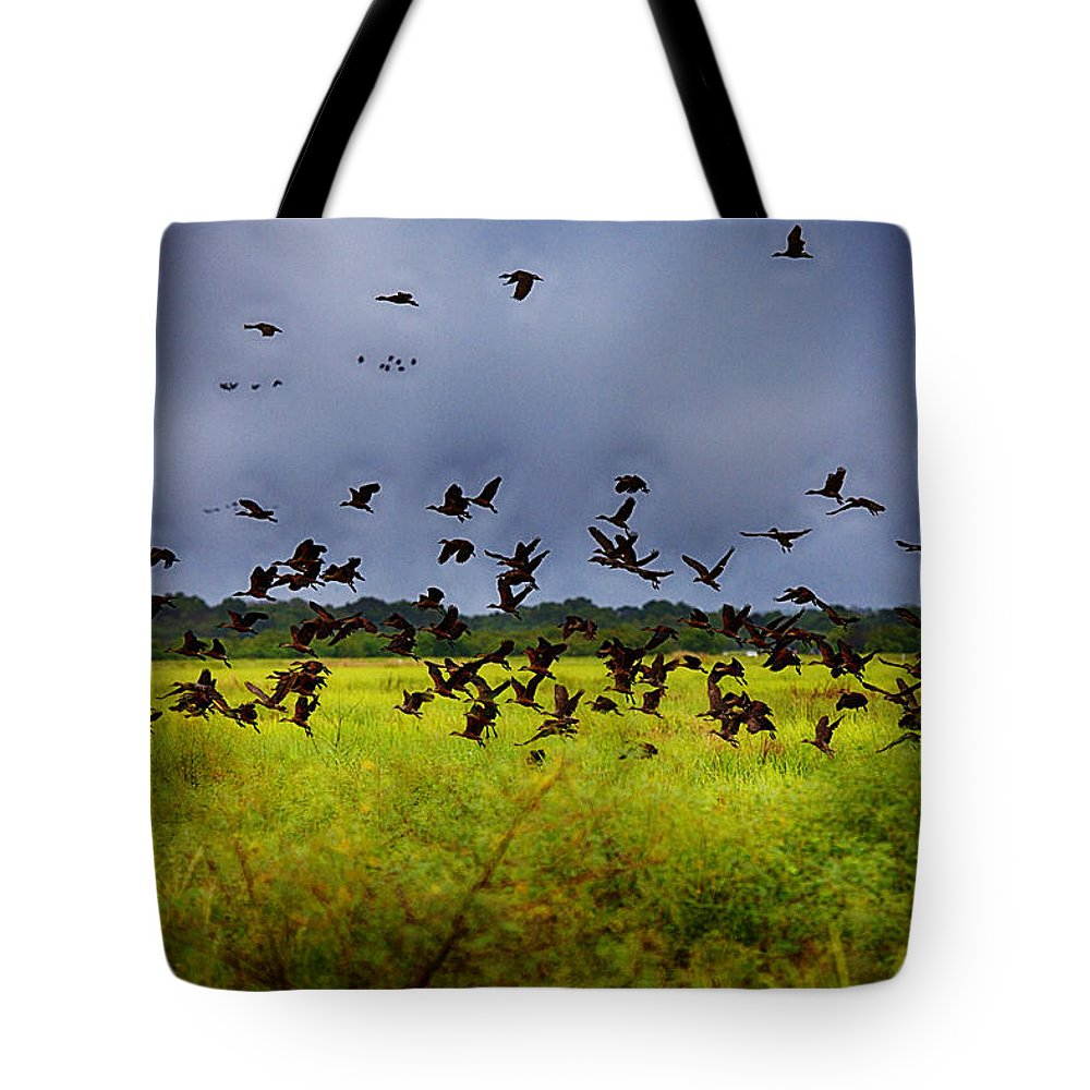 Birds Tote Bag featuring the photograph Birds Of The Wetlands V11 by Douglas Barnard