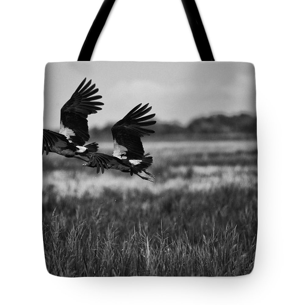 Birds Tote Bag featuring the photograph Birds Of The Wetlands V12 by Douglas Barnard