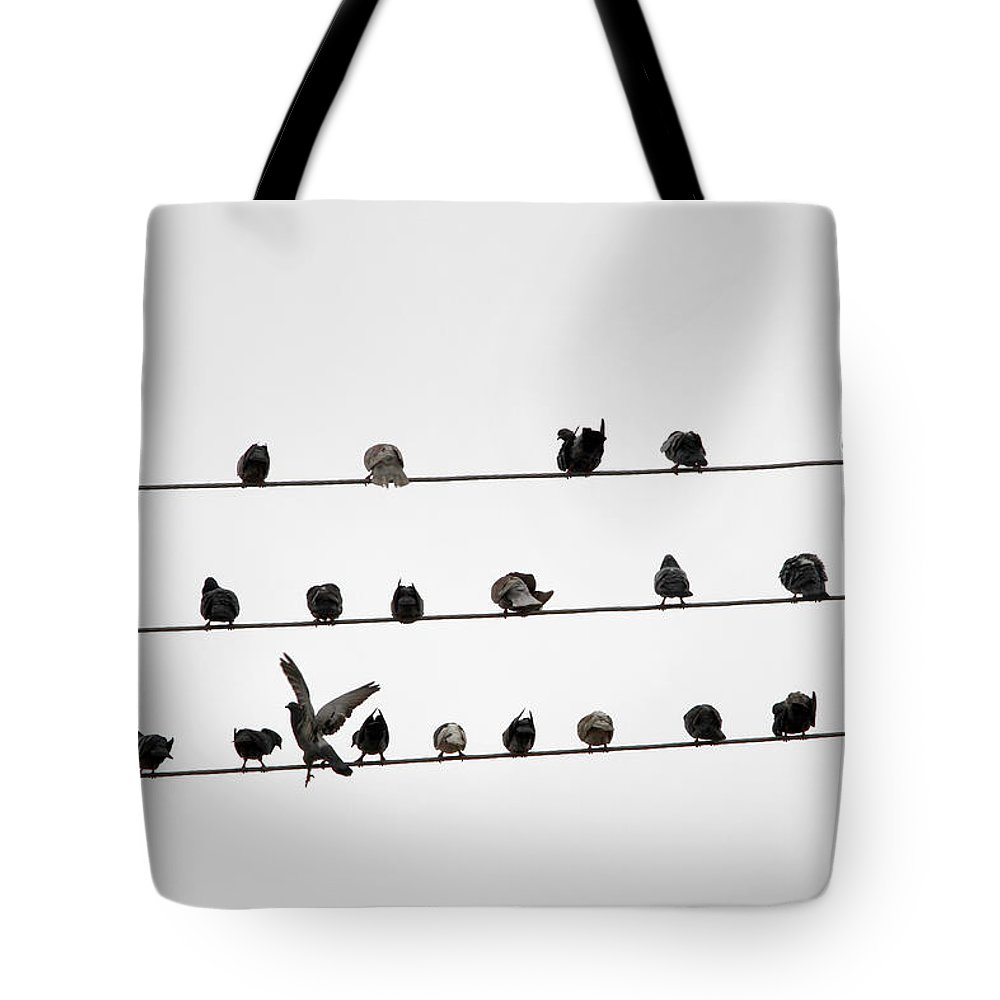 Amazon Rainforest Tote Bag featuring the photograph Birds Pattern by Ricardo Lima