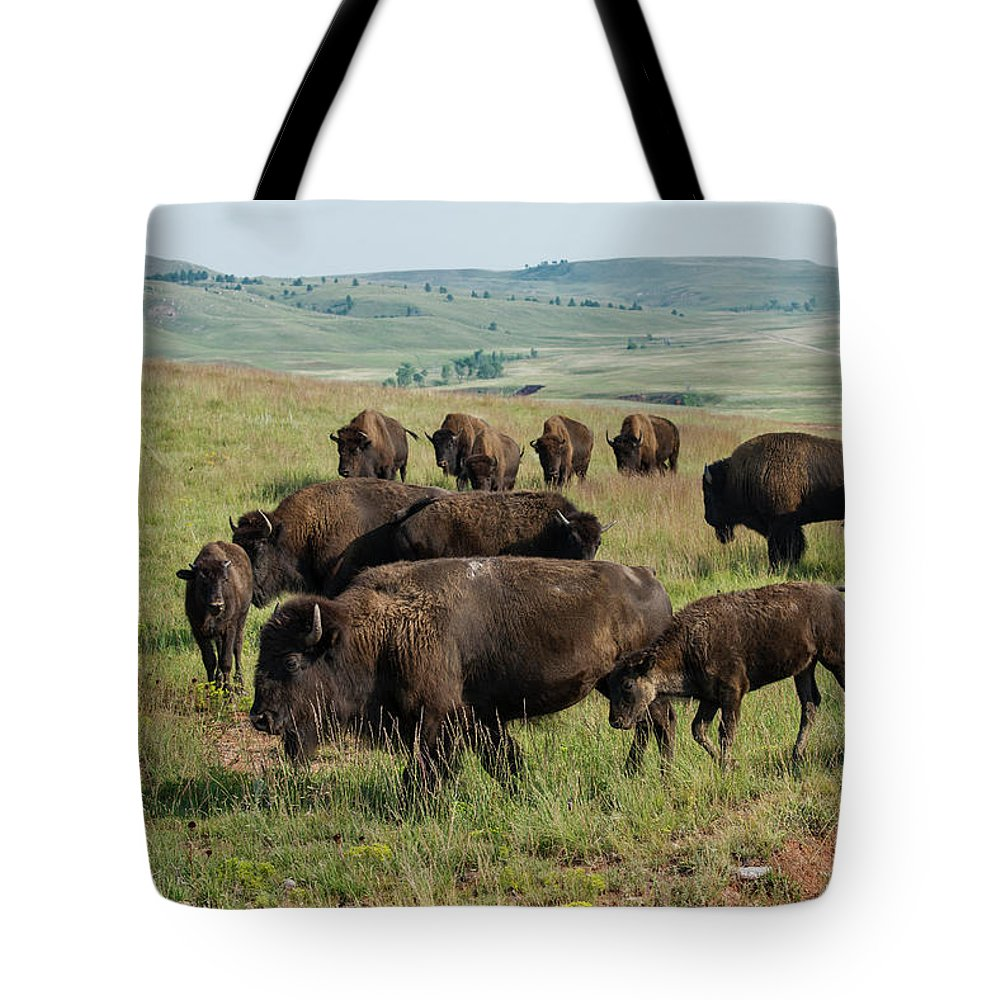 Grass Tote Bag featuring the photograph Bison Buffalo In Wind Cave National Park by Mark Newman