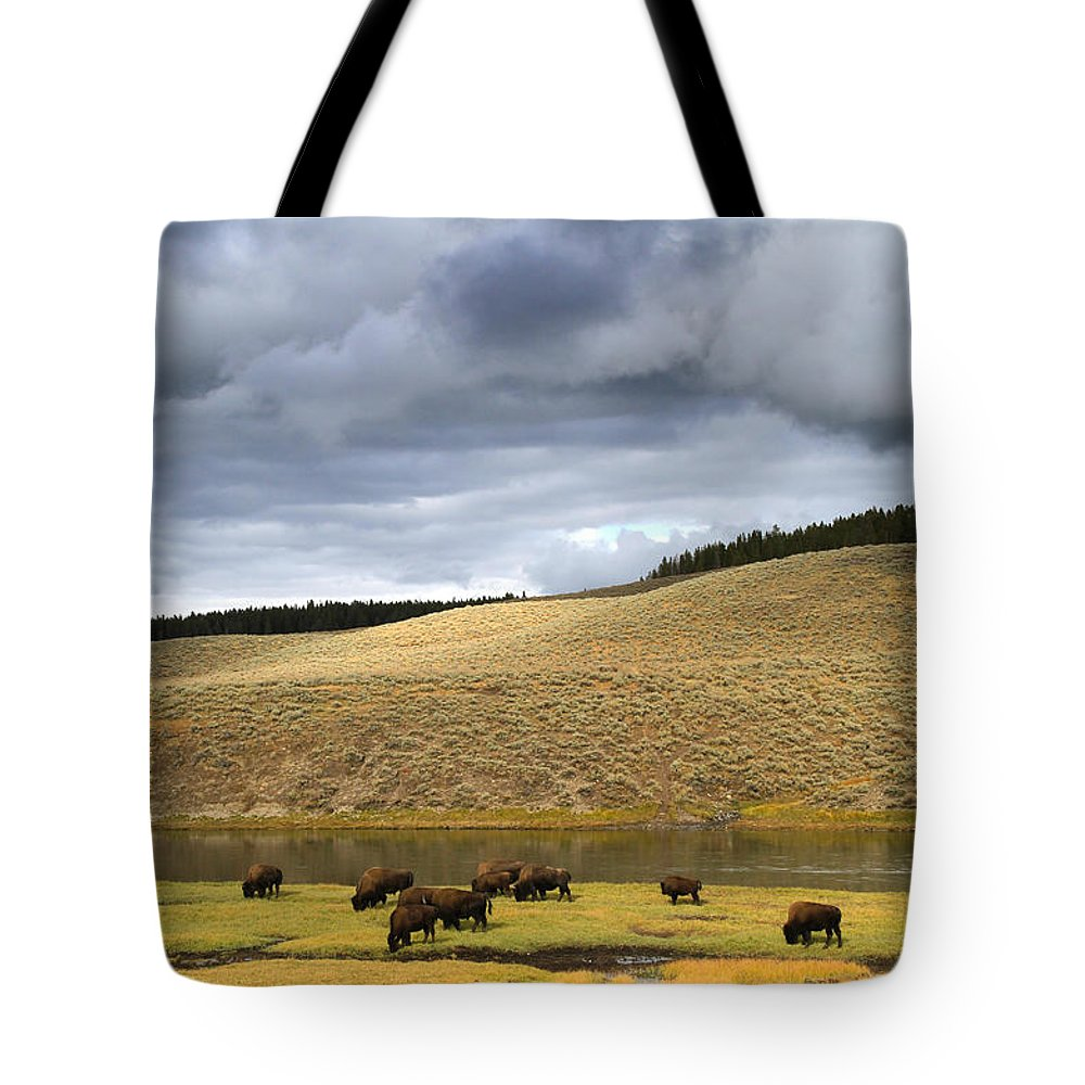 Mountains Tote Bag featuring the photograph Bison Grazing Along The Yellowstone River In Hayden Valley by Ed Riche