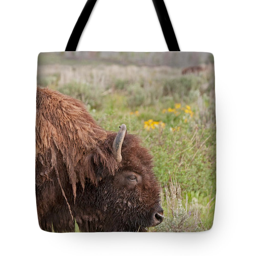 Antelope Flats Road Tote Bag featuring the photograph Bison In The Flowers Ingrand Teton National Park by Fred Stearns
