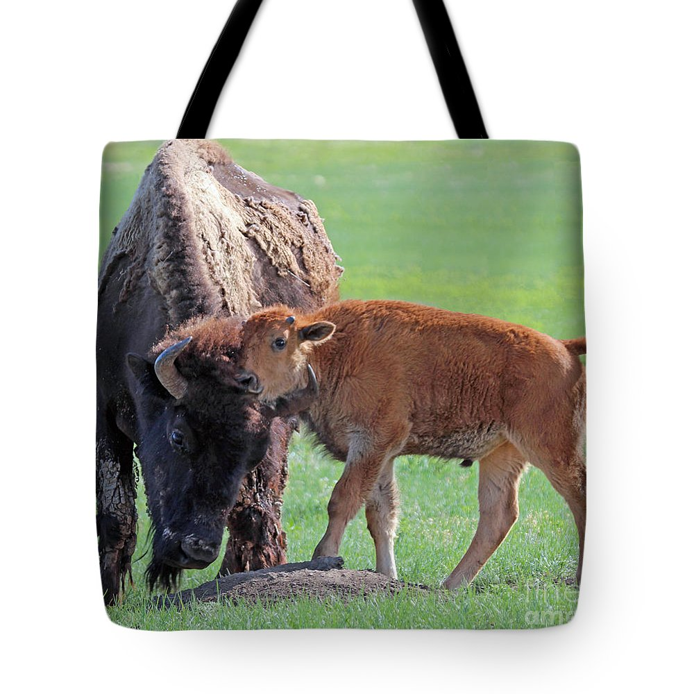 Bison Tote Bag featuring the photograph Bison With Young Calf by Bill Gabbert