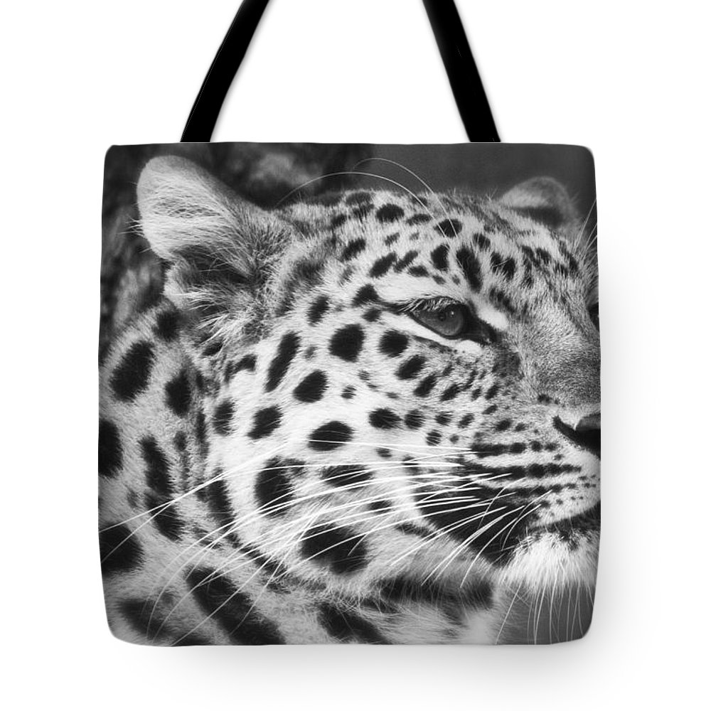 Marwell Tote Bag featuring the photograph Black And White - Amur Leopard Portrait by Chris Boulton