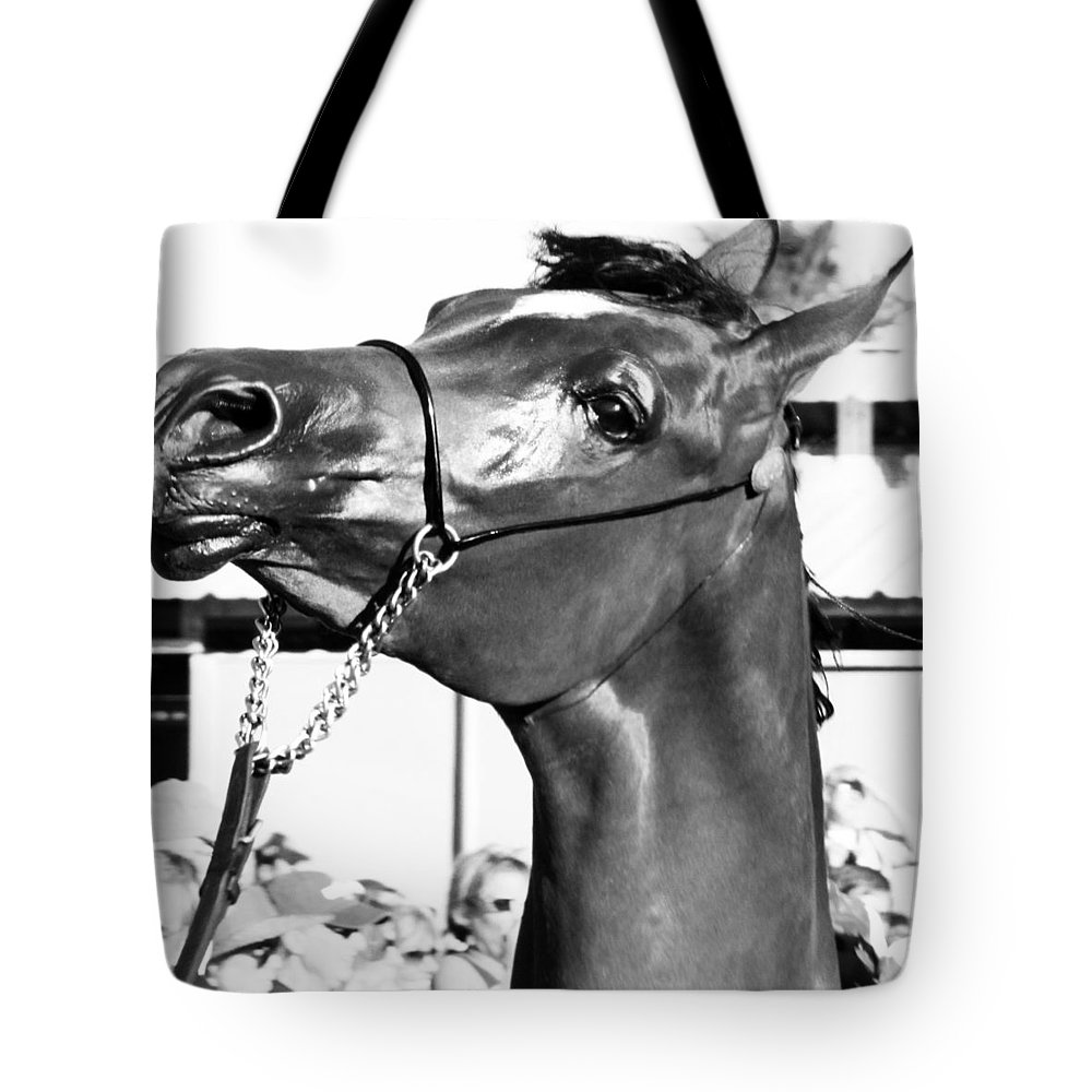 Horse Tote Bag featuring the photograph Black And White Horse Head by C H Apperson