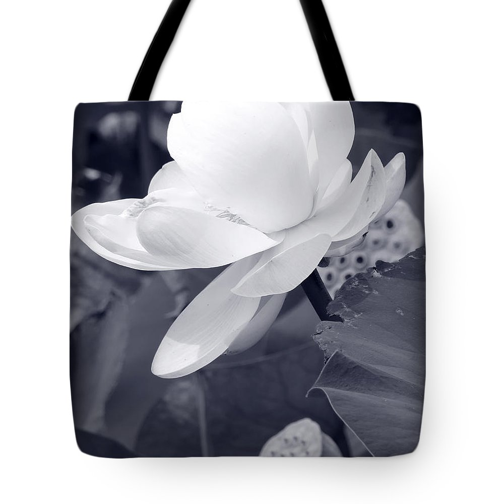 Lotus Tote Bag featuring the photograph Black And White Lotus by Shawna Rowe